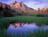 Sawtooth NRA, Idaho      <br /> Morning sun on Mt.McGown with reflections on a grassy wetland pond