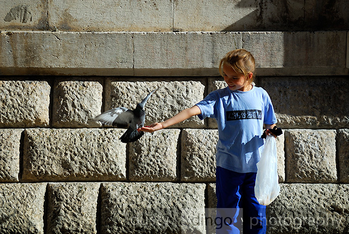 One child (9 years old) feeding pigeons, Dubrovnik old town, Croatia