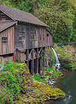 Clark County, WA<br /> Cedar Creek Grist Mill (1876) surrounded by spring forest green