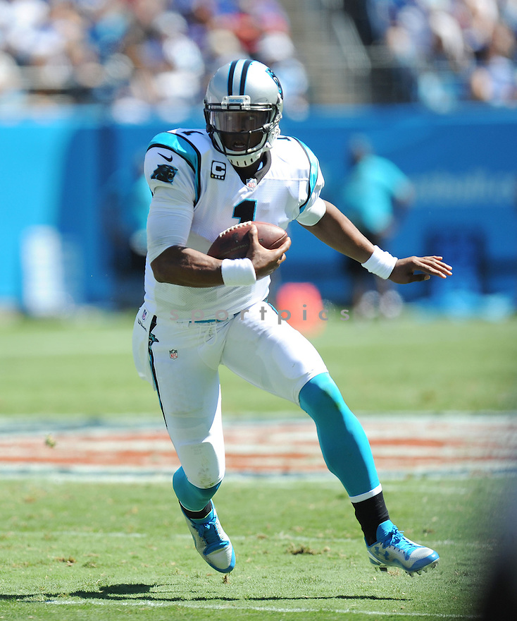 New York Giants @ Carolina Panthers<br /> <br /> National Football League<br /> Carolina Panthers 38  New York Giants 0<br /> September 22, 2013