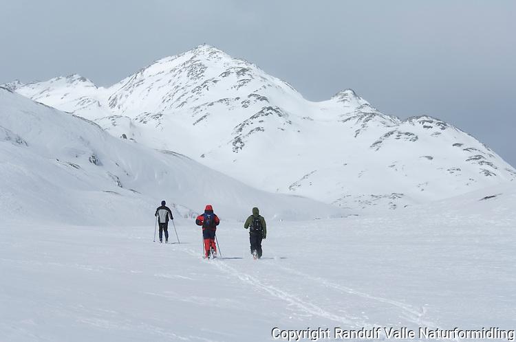 Skiløpere i fjellandskap ---- Skiers in mountain landscape