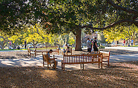 Late afternoon in the Academic Quad, Feb. 5, 2016.<br />