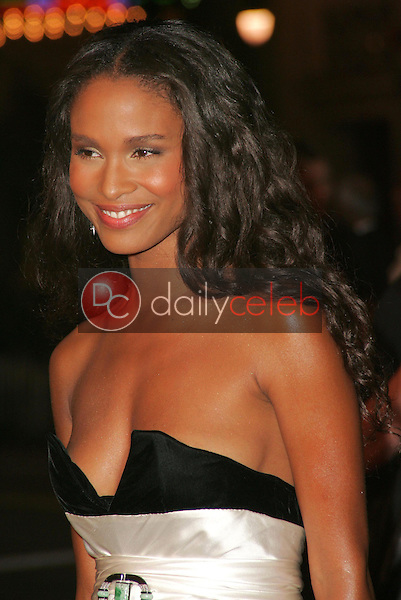 Joy Bryant<br />