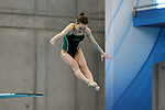 19 February 2016: Notre Dame's Lindsey Streepey competes in the Women's 3 Meter Diving preliminaries. The 2016 Atlantic Coast Conference Swimming and Diving Championships were held at the Greensboro Aquatic Center in Greensboro, North Carolina from February 17-27, 2016.