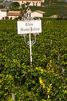 Clos Saint Julien a vineyard just outside the village Saint Emilion in Bordeaux