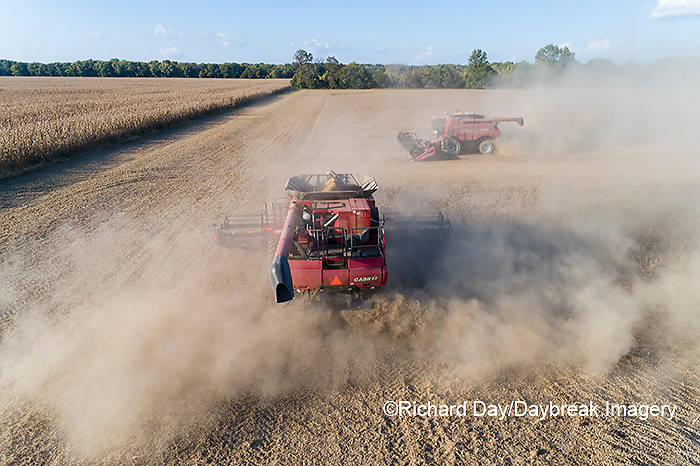 63801-13417 Harvesting soybeans in fall-aerial  Marion Co. IL