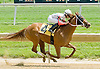 Cheswick winning at Delaware Park on 5/12/12