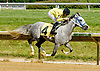 Vazs Mane Son winning at Delaware Park on 6/16/12