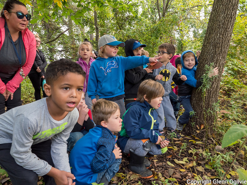 2Kindergarten children of King George VI School explore Canatara Park, Lake Chipican and the Animal Farm during a weekly outing.