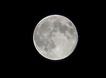 """MIRAMAR, FL - AUGUST 10: The biggest Supermoon hovers over the night sky for a second day on August 10, 2014. The supermoon, technically known as """"Perigee moon,"""" appears when the moon is in its closest to Earth, and this year's brightest and fullest. on Sunday August 10, 2014 in Miramar, Florida. (Photo by Johnny Louis/jlnphotography.com)"""