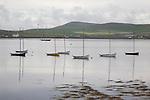 Boats in Pierowall Harbour, Westray, Orkney Islands, Scotland
