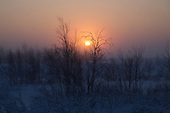 The winter sun sets over the tundra in Novy Urengoi, Arctic Siberia, Russia, by Photographer Justin Jin.