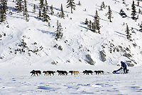 John Baker on Fish River just prior to arrival @ White Mtn chkpt in 5th place 2006 Iditarod Alaska