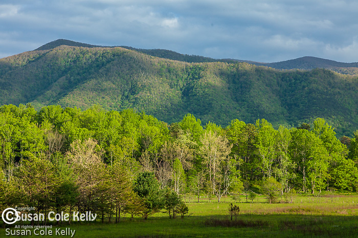 Mountains surround  Cades Cove, Great Smoky Mountains National Park, Tennesee, USA
