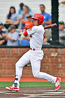 Johnson City Cardinals second baseman J.D. Murders (8) swings at a pitch during a game against the Bristol Pirates at TVA Credit Union Ballpark on June 23, 2017 in Johnson City, Tennessee. The Pirates defeated the Cardinals 4-3. (Tony Farlow/Four Seam Images)
