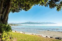 Kaikoura beach with Kaikouras mountains in background, Kaikoura, Marlborough Region, South Island, East Coast, New Zealand