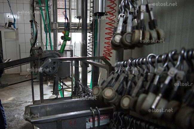 RUMAENIEN, 02.2013, Oltenita. Ausruestung in einem Schlachthof fuer Pferde. | Equipment used in a slaughter house for horses. © Bogdan Croitoru/EST&OST