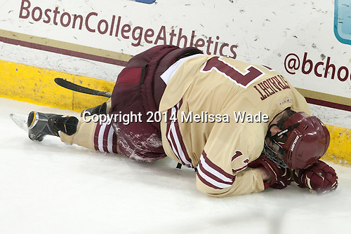 Destry Straight (BC - 17) - The Boston College Eagles defeated the visiting University of Michigan Wolverines 5-1 (EN) on Saturday, December 13, 2014, at Kelley Rink in Conte Forum in Chestnut Hill, Massachusetts.