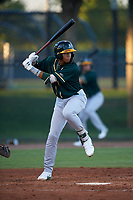 AZL Athletics Green Jhoan Paulino (8) at bat during an Arizona League game against the AZL Dodgers Lasorda at Camelback Ranch on June 19, 2019 in Glendale, Arizona. AZL Dodgers Lasorda defeated AZL Athletics Green 9-5. (Zachary Lucy/Four Seam Images)