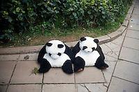 Stuffed panda bear toys sit on a sidewalk in the Kunming Zoo in Kunming, Yunnan, China.