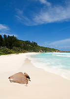 Seychelles, Island La Digue, Petite Anse: secluded beach in the southeast