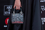 Handbag Cayetana Guillen Cuervo attends red carpet of Goya Cinema Awards 2018 at Madrid Marriott Auditorium in Madrid , Spain. February 03, 2018. (ALTERPHOTOS/Borja B.Hojas)