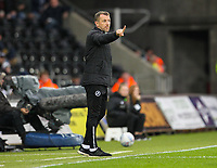 23rd November 2019; Liberty Stadium, Swansea, Glamorgan, Wales; English Football League Championship, Swansea City versus Millwall; Gary Rowett manager of Millwall gestures to his players - Strictly Editorial Use Only. No use with unauthorized audio, video, data, fixture lists, club/league logos or 'live' services. Online in-match use limited to 120 images, no video emulation. No use in betting, games or single club/league/player publications