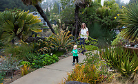 Mother and baby daughter walking on path in University of California Botanical Garden