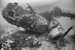 Tulagi, Florida Islands, Solomon Islands;  a view of the left engine, wing and nose of a US PBY-5A Catalina seaplane, which was sunk during WWII, sitting upright on sand and rubble with it's wings intact but its engines having fallen from their mounts, laying next to the fuselage, just outside of Tulagi harbor