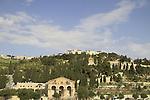 Israel, Jerusalem, the Garden of Gethsemane at the foothill of the Mount of Olives