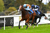 George William ridden by Tom Marquand and trained by Richard Hannon win The British Stallion Studs EBF Bathwick Tyres Conditions Stakes  during Bathwick Tyres Reduced Admission Race Day at Salisbury Racecourse on 9th October 2017