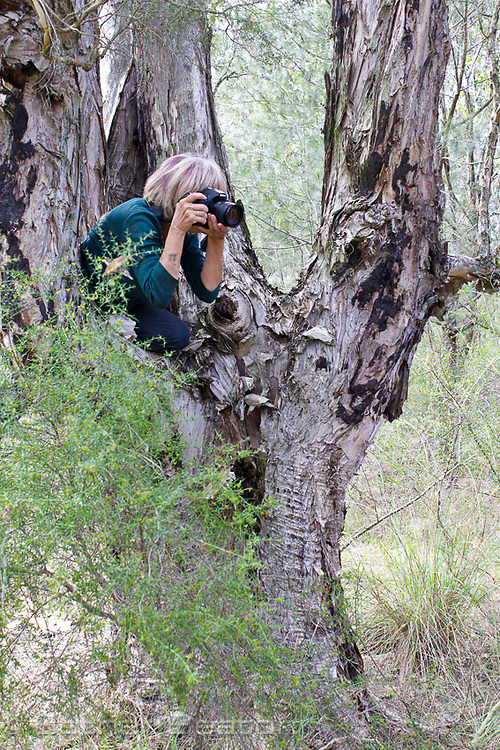 Esther Beaton photographing an assignment for HNCMA in Richmond region, New South Wales