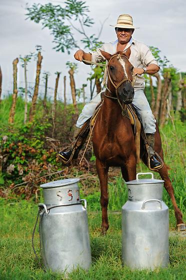 Repartidor de leche a caballo con lecheras / Playa Venao, Panamá.<br /> <br /> Edición de 10   Víctor Santamaría.