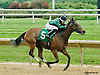 Five Star Dixie winning at Delaware Park on 8/23/14