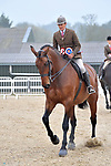 Arena A morning. Showing. RIHS qualifiers. Brook Farm Training Centre. Essex. UK. 07/04/2019. ~ MANDATORY Credit Garry Bowden/Sportinpictures - NO UNAUTHORISED USE - 07837 394578