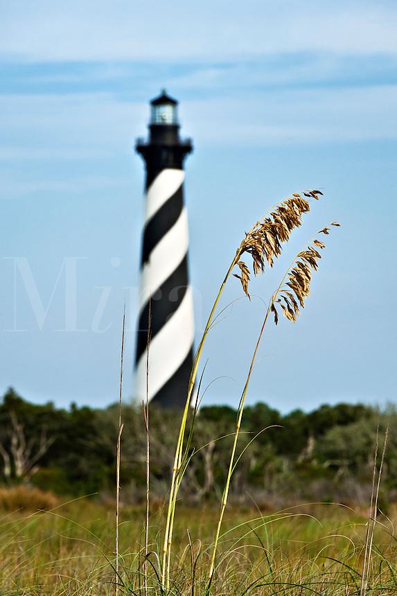 Cape Hatteras lighthouse, Hatteras Island, NC, North Carolina, USA
