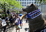 June 15, 2014, Tokyo, Japan - The bronze statue of Hachi the faithful dog, an icon of Tokyos Shibuya railroad station, wears a world cup towel around its neck as ahuge crowd of hard-core soccer fans stage a pep rally following Japans 1-2 loss to Ivory Coast in a world cup match on Sunday, June 15, 2014. The west African handed Japan her first defeat in their first match in the preliminary round of the 2014 FIFA World Cup in Recife, Brazil. (Photo by Natsuki Sakai/AFLO) AYF -mis-