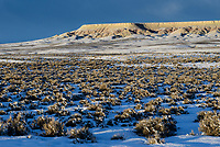 Key winter habitat for Greater Sage-Grouse in the BLM administered Alkali Basin. This area is under threat of energy development by the Naturally Pressured Lance gas field project (NPL). Sublette County, Wyoming.