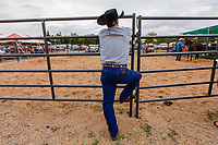 Usa,Wyoming, Cheyenne,a cowboy at Frontier days 2017