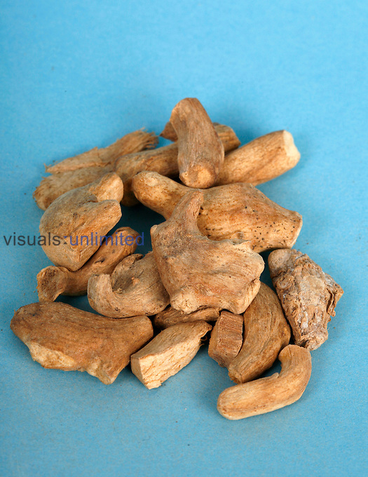Ginger root is a stimulant and carminative and used frequently for dyspepsia and colic. It may decrease joint pain from arthritis and also have blood thinning and cholesterol properties which may make it useful for treating heart disease. Royalty Free