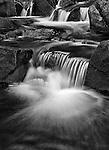 Atherton Brook cascades