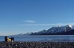 Alaska, Kenai Fjords's National Park, Reading on a beach, Aialik Bay,