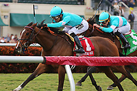 HALLANDALE BEACH, FL - FEB 3:  Thewayiam #1 with Jose L Ortiz on board wins the Sweetest Chant GIII Stakes, at Gulfstream Park on February 3, 2018 in Hallandale Beach, Florida. (Photo by Liz Lamont/Eclipse Sportswire/Getty Images)
