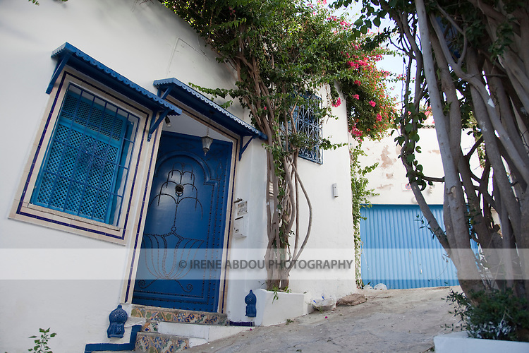 Sidi Bou Said, a town a few kilometers from the legendary city of Carthage, Tunisia, is colored white and blue.