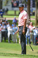 Tiger Woods (USA) chips on to 11 during round 2 of the World Golf Championships, Mexico, Club De Golf Chapultepec, Mexico City, Mexico. 2/22/2019.<br /> Picture: Golffile   Ken Murray<br /> <br /> <br /> All photo usage must carry mandatory copyright credit (© Golffile   Ken Murray)