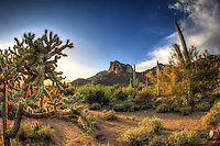 Golden Castle - Lost Dutchman Wilderness, Arizona