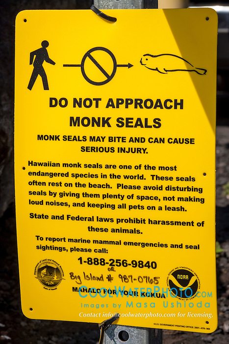 NOAA public sign for critically endangered Hawaiian monk seal, Monachus schauinslandi, Honokohau Harbor, Kona Coast, Big Island, Hawaii, USA, Pacific Ocean