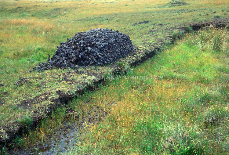 Peat bog - peat extraction