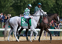October 06, 2018 : #5 Awestruck and Brian Hernandez Jr. in the 38th running of the Thoroughbred Club of America (Grade 2) $250,000 at Keeneland Race Course on October 06, 2018 in Lexington, KY.  Candice Chavez/ESW/CSM