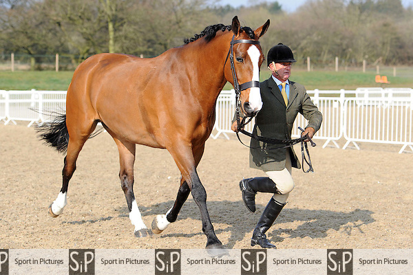 Class 4. Affiliated Spring Showing. Brook Farm Training Centre. Essex. 04/04/2015. MANDATORY Credit Ellen Szalai/Sportinpictures - NO UNAUTHORISED USE - 07837 394578